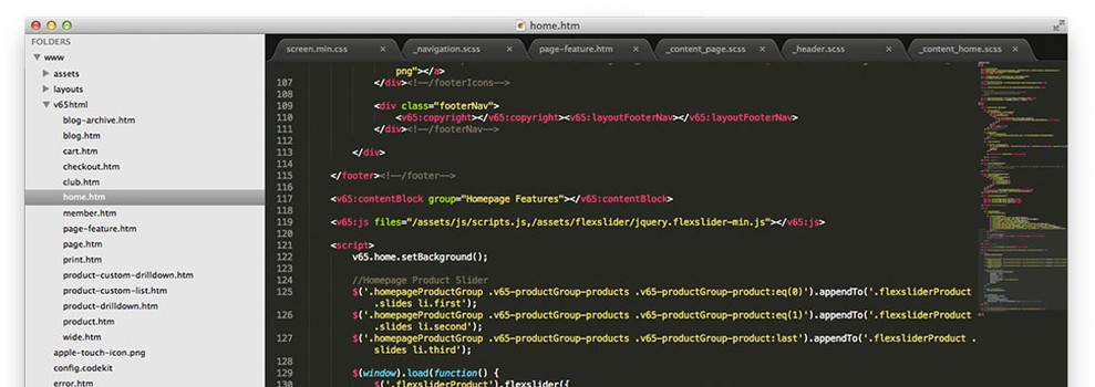 Vin65 - Full Control (HTML/CSS) - Totally flexible designs