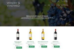Vin65 Portfolio - Scrim