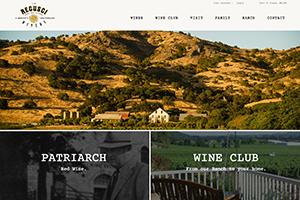 Vin65 Portfolio - Regusci Winery