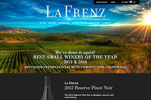 Vin65 Portfolio - La Frenz