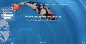 Children of the Sun Koi